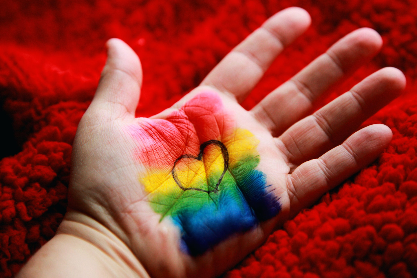 Gender Identity and Sexual Orientation: The Difference
