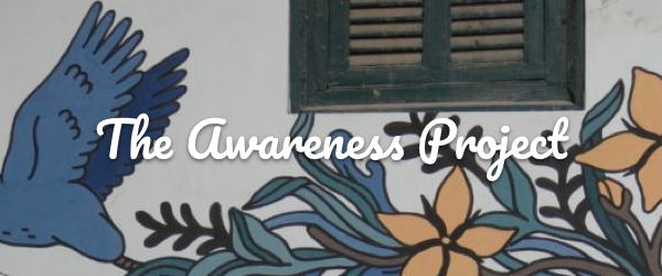The Awareness Project