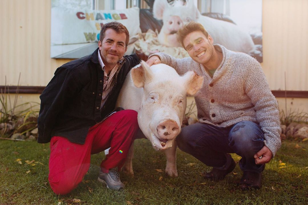 How the story of these two gay dads to a pig is hard to miss this Pride