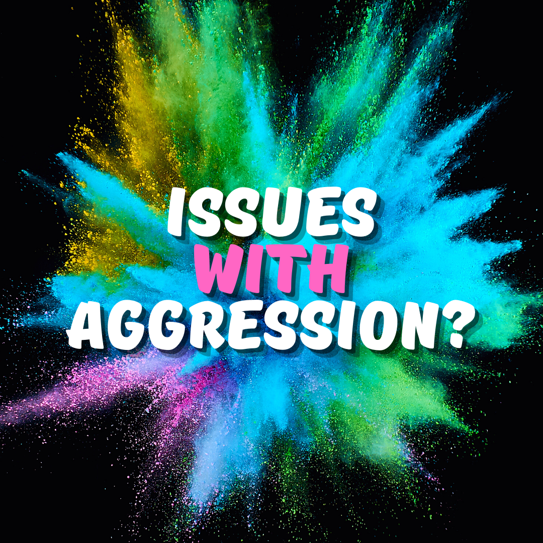 Do we have an Issue with Aggression in our Culture?
