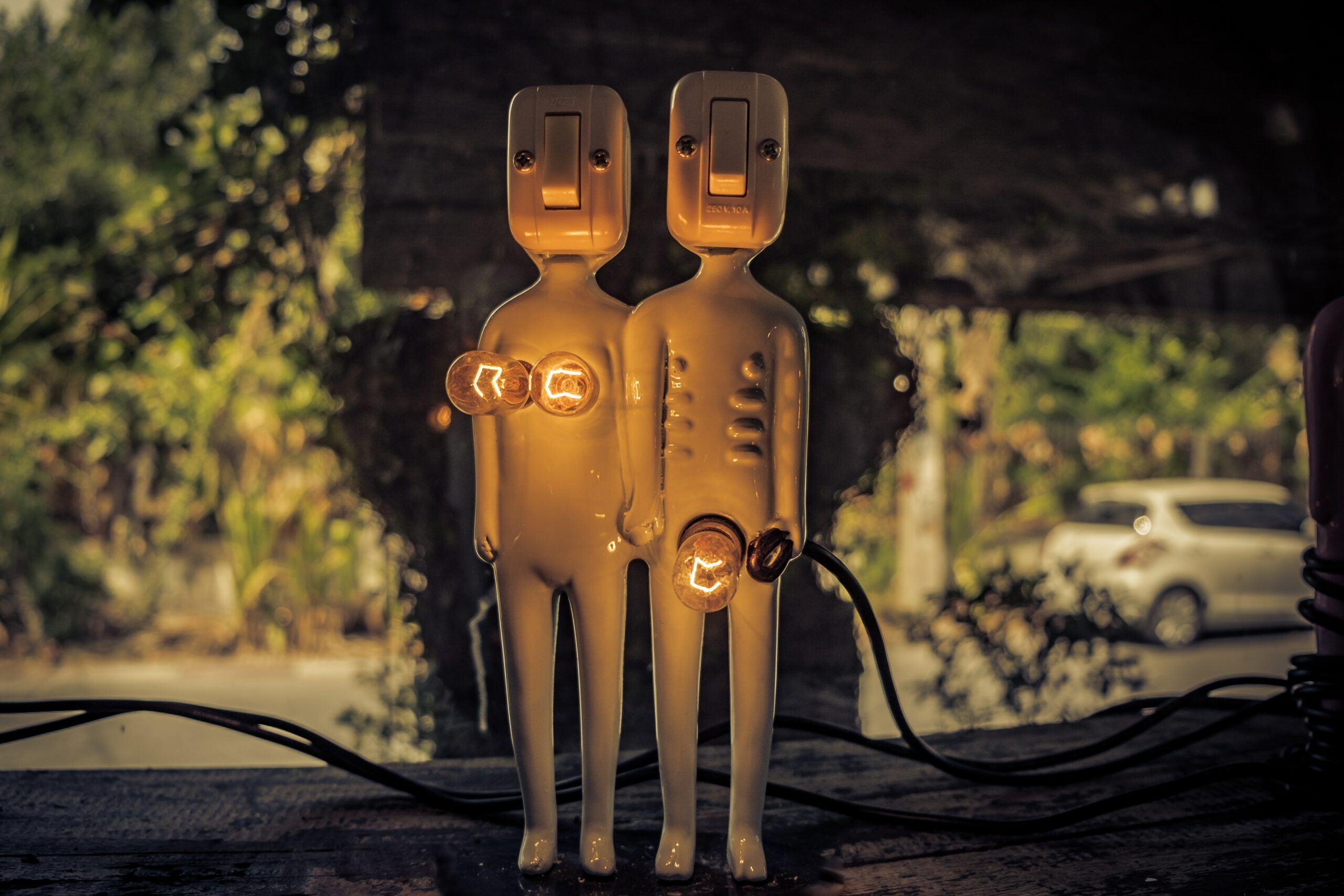 Can We Fall in Love with Robots?